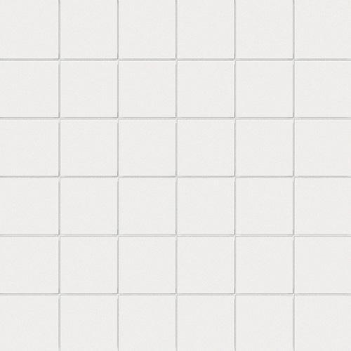 5x5 su rete FLUORO