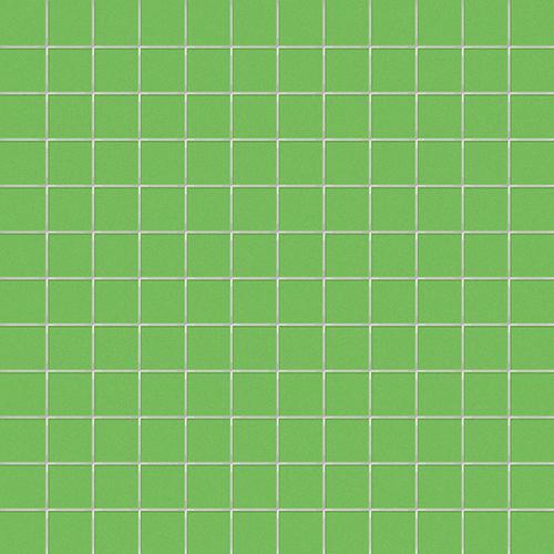 2,5x2,5 su rete KIWI
